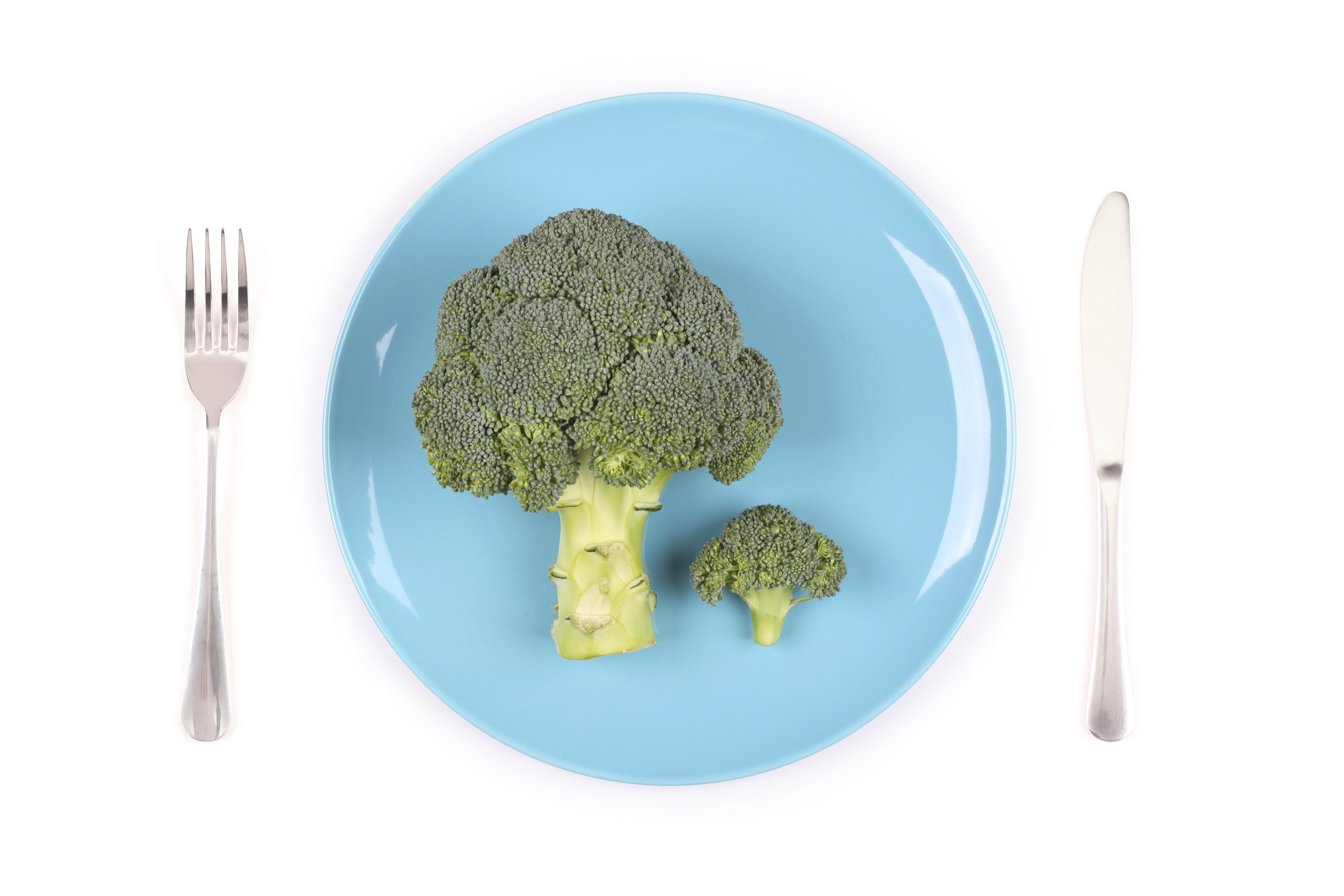 learn portion control to lose weight
