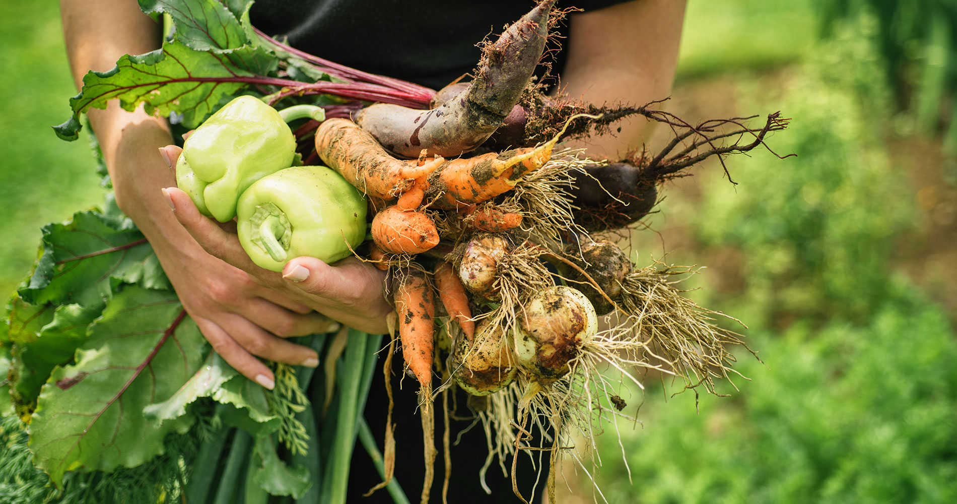 Is Organic Food Worth The Extra Cost? | QA