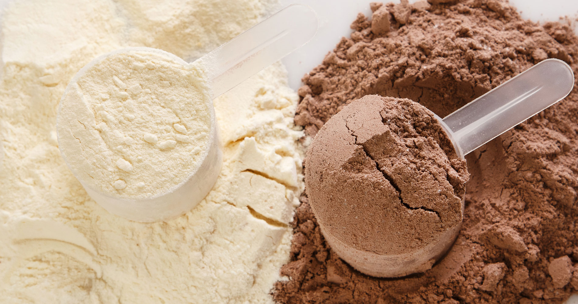 The Relationship Between Whey Protein and Lactose Intolerance