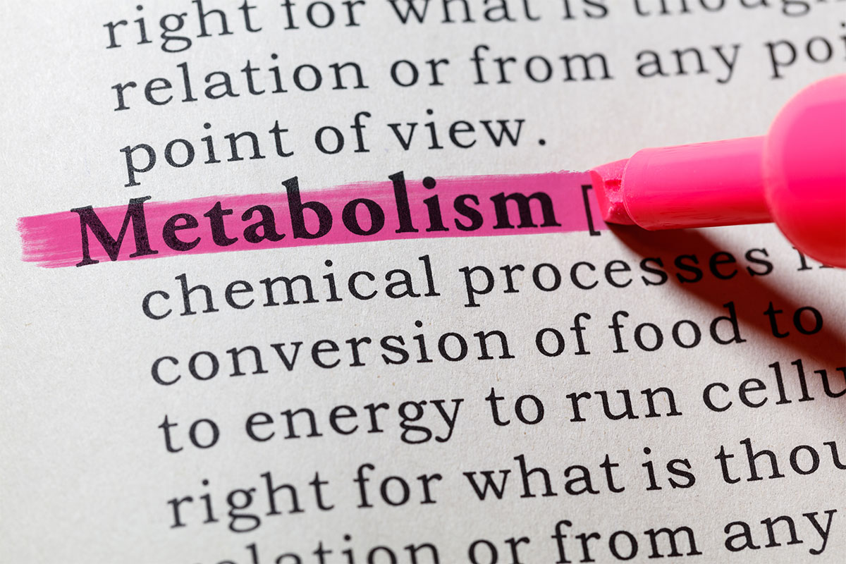 Stress and a Lowered Metabolism