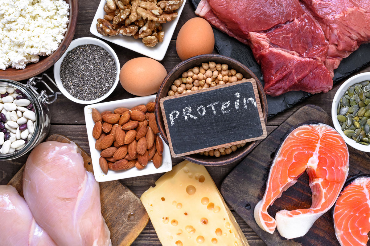 Eating the Right amount of Protein | QA